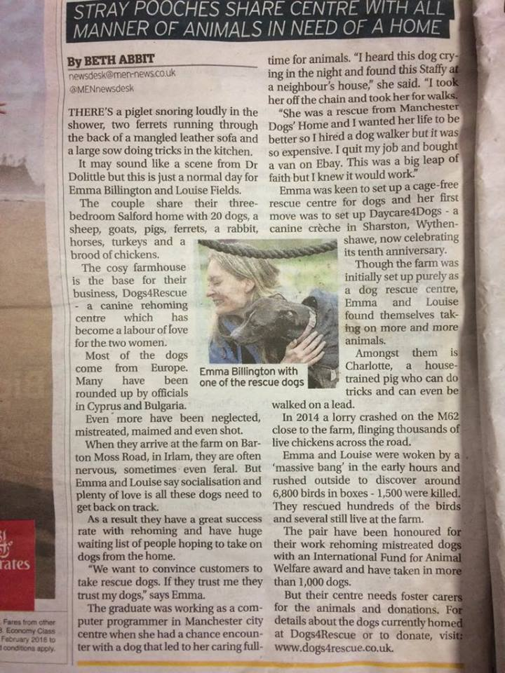 A writeup about Dogs 4 Rescue in The MEN